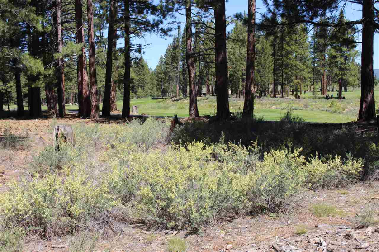 Image for 12382 Caleb Drive, Truckee, CA 96161