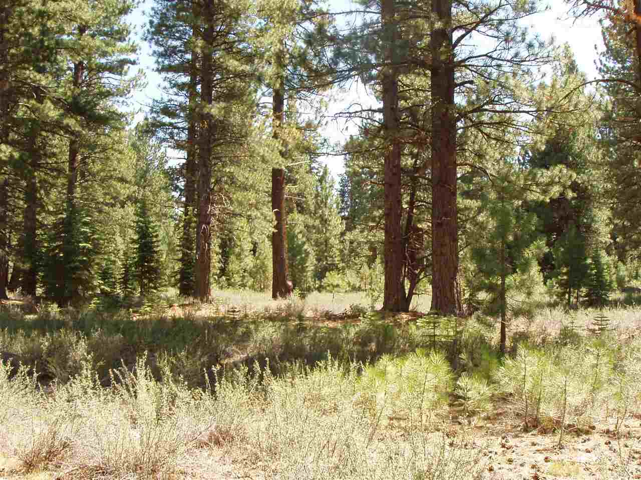 Image for 10470 Pine Cone Drive, Truckee, CA 96161