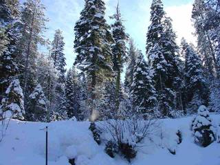 Listing Image 12 for 14865 South Shore Drive, Truckee, CA 96161