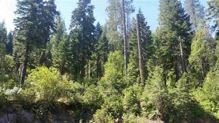 Listing Image 2 for 14865 South Shore Drive, Truckee, CA 96161