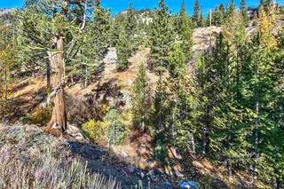 Listing Image 12 for 1432 Mineral Springs Trail, Alpine Meadows, CA 96146