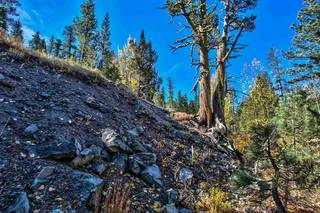 Listing Image 13 for 1432 Mineral Springs Trail, Alpine Meadows, CA 96146