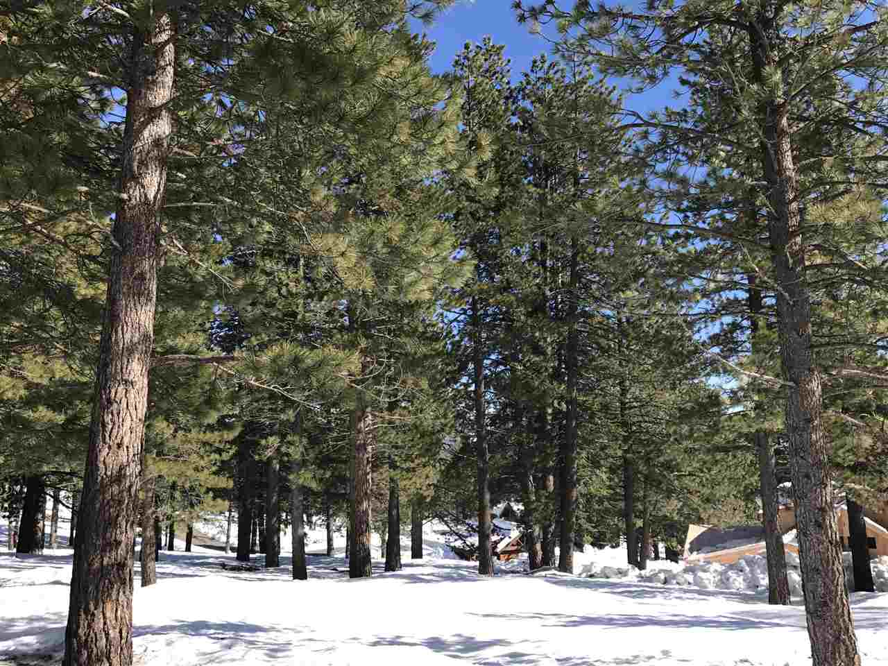 Image for 11711 Coburn Drive, Truckee, CA 96161
