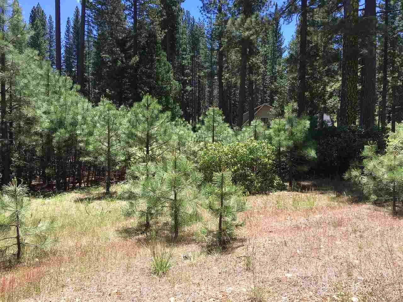 Image for 493 Eureka Springs Drive, Blairsden, CA 96103