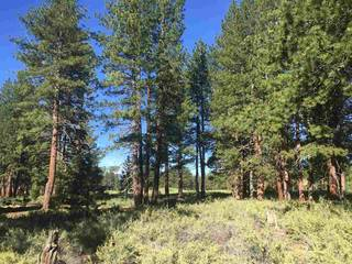 Listing Image 4 for 13132 Lookout Loop, Truckee, CA 96161