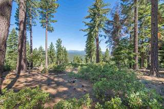 Listing Image 6 for 1942 Gray Wolf, Truckee, CA 96161