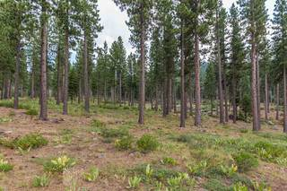 Listing Image 3 for 8172 Fallen Leaf Way, Truckee, CA 96161