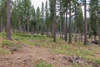 Listing Image 6 for 8172 Fallen Leaf Way, Truckee, CA 96161