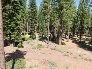 Listing Image 3 for 9256 Heartwood Drive, Truckee, CA 96161