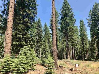 Listing Image 10 for 9256 Heartwood Drive, Truckee, CA 96161
