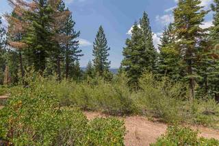 Listing Image 13 for 2362 Overlook Place, Truckee, CA 96161
