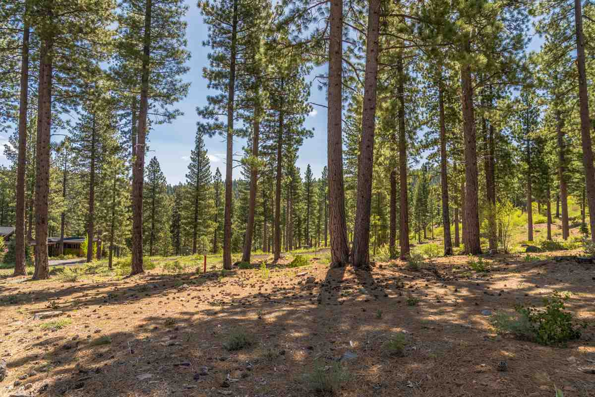 Image for 453 Corner Lot Newhall Court, Truckee, CA 96161