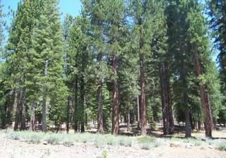 Listing Image 2 for 12636 Granite Drive, Truckee, CA 96161