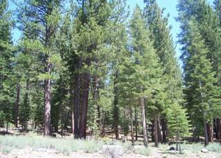 Listing Image 4 for 12636 Granite Drive, Truckee, CA 96161