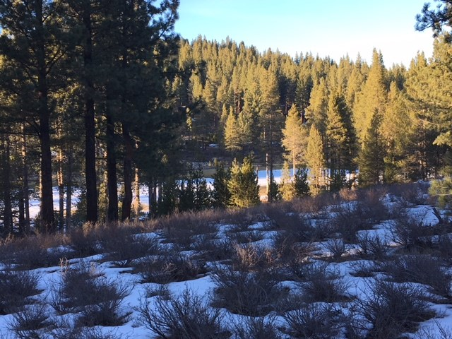Image for 11082 Meek Court, Truckee, CA 96161
