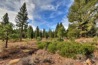 Listing Image 11 for 10644 Nine Bark Road, Truckee, CA 96161