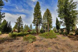 Listing Image 6 for 10644 Nine Bark Road, Truckee, CA 96161