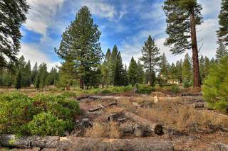 Listing Image 7 for 10644 Nine Bark Road, Truckee, CA 96161