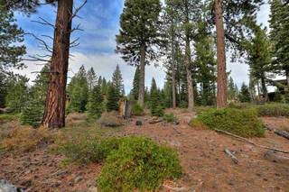 Listing Image 8 for 10644 Nine Bark Road, Truckee, CA 96161