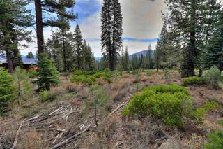 Listing Image 9 for 10644 Nine Bark Road, Truckee, CA 96161