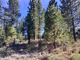 Listing Image 10 for 9344 Heartwood Drive, Truckee, CA 96161