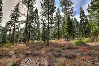 Listing Image 4 for 10625 Carson Range Road, Truckee, CA 96161