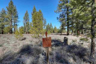 Listing Image 11 for 12360 Caleb Drive, Truckee, CA 96161