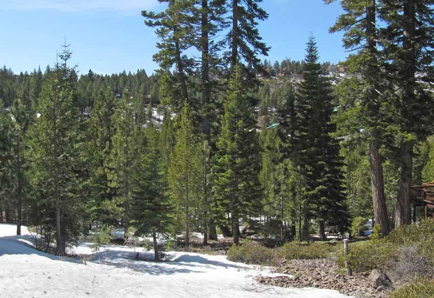 Image for 13669 Hillside Drive, Truckee, CA 96161