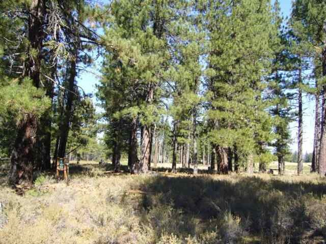 Image for 12404 Caleb Drive, Truckee, CA 96161