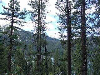 Listing Image 5 for 10240 Donner Lake Road, Truckee, CA 96161