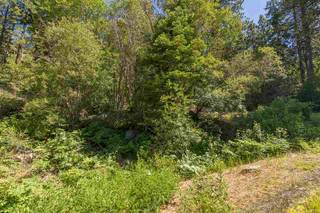 Listing Image 11 for 10455 Donner Lake Road, Truckee, CA 96161-0000