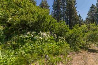 Listing Image 12 for 10455 Donner Lake Road, Truckee, CA 96161-0000