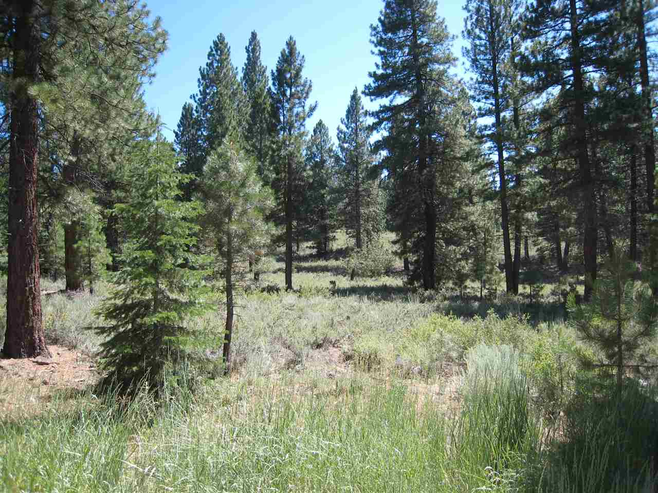 Image for 15375 Kent Drive, Truckee, CA 96161-0000