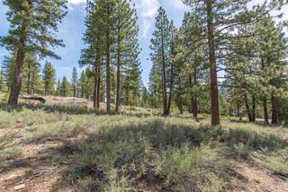 Listing Image 9 for 11574 China Camp Road, Truckee, CA 96161