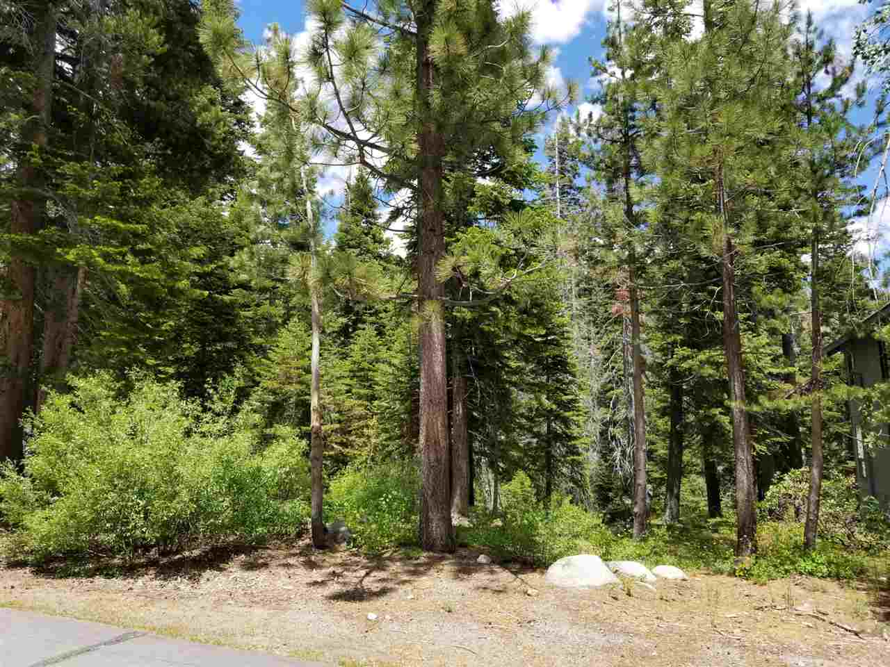 Image for 1368 Mineral Springs Trail, Alpine Meadows, CA 96146