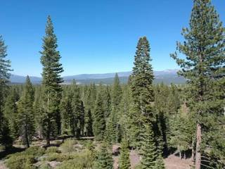 Listing Image 3 for 9321 Nine Bark Road, Truckee, CA 96161
