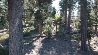 Listing Image 6 for 9321 Nine Bark Road, Truckee, CA 96161