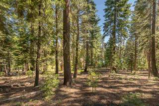 Listing Image 11 for 12380 Muhlebach Way, Truckee, CA 96161