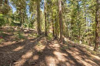 Listing Image 12 for 12380 Muhlebach Way, Truckee, CA 96161