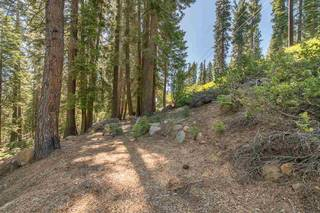 Listing Image 4 for 12380 Muhlebach Way, Truckee, CA 96161