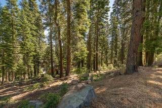 Listing Image 5 for 12380 Muhlebach Way, Truckee, CA 96161