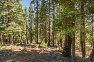 Listing Image 6 for 12380 Muhlebach Way, Truckee, CA 96161