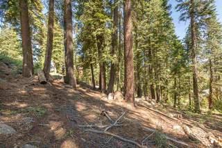 Listing Image 7 for 12380 Muhlebach Way, Truckee, CA 96161