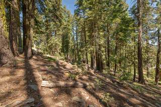 Listing Image 8 for 12380 Muhlebach Way, Truckee, CA 96161
