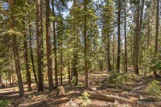 Listing Image 9 for 12380 Muhlebach Way, Truckee, CA 96161
