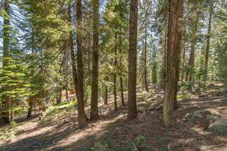 Listing Image 10 for 12380 Muhlebach Way, Truckee, CA 96161