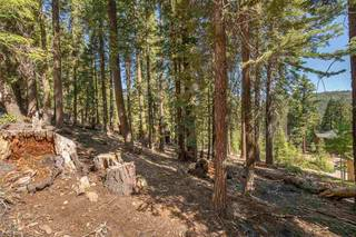 Listing Image 13 for 12360 Muhlebach Way, Truckee, CA 96161