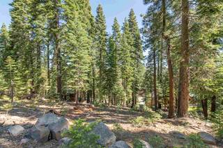 Listing Image 5 for 12360 Muhlebach Way, Truckee, CA 96161
