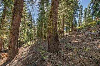 Listing Image 8 for 12360 Muhlebach Way, Truckee, CA 96161