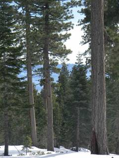 Listing Image 12 for 0 Old County Road, Tahoe City, CA 96145